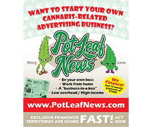 Pot Leaf News